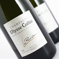 Ulysse Collin